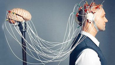 Photo of علماء أعصاب ينجحون في قراءة أفكار الإنسان!