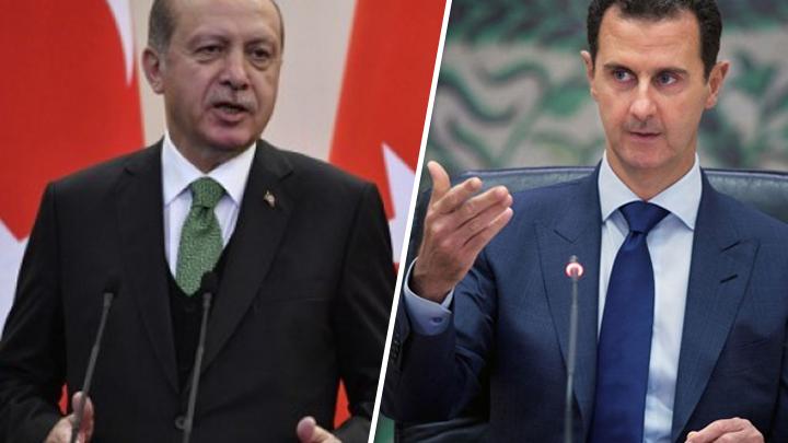 الأسد أردوغان