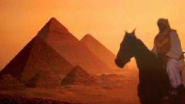 عمرو بن العاص فتح مصر