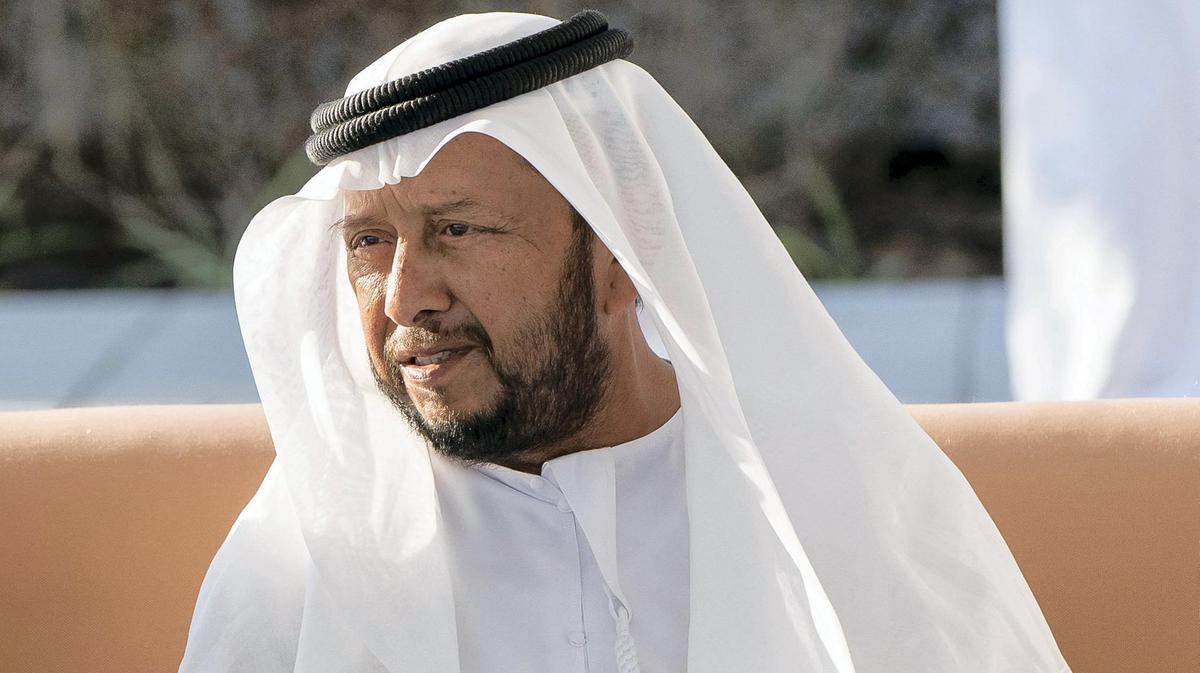 الشيخ سلطان بن زايد (إنترنت)