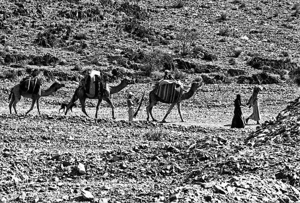 صورة تعبيرية لعرب يرتحلون في بادية الحجاز
