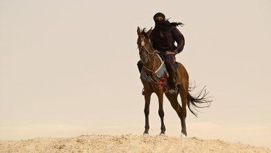 Photo of خادم النبي ﷺ وحامل اللواء.. قيس بن سعد: قصة الداهية الجواد، أدهى العرب لولا الإسلام