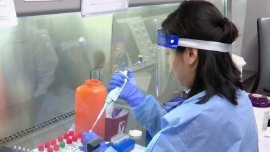 Photo of فيروس كورونا والكمامات والقفازات.. معلومات خاطئة قد تكلفنا حياتنا ونصائح للوقاية منه