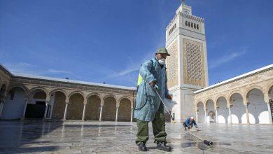 Photo of حقيقة إعادة فتح المساجد في مصر والسعودية والإمارات