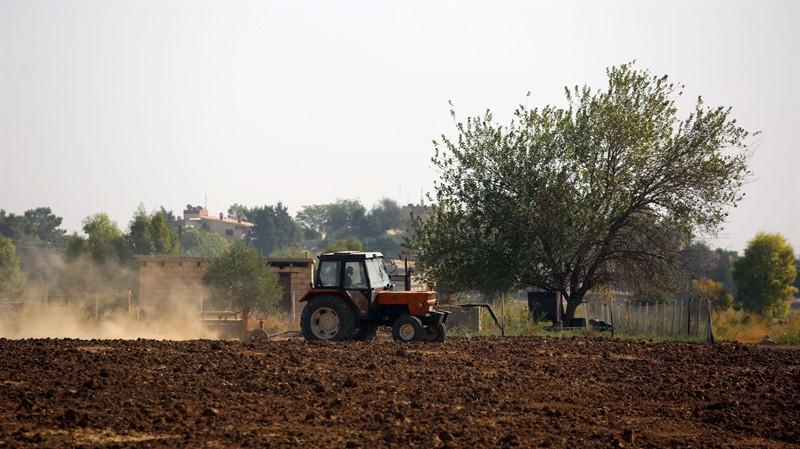 الزراعة شرق سوريا - أرشيف