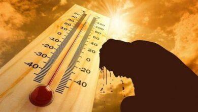 """Photo of يخفف الحرارة ويحافظ على البرودة.. ابتكار طلاء سحري يعكس 98% من ضوء الشمس """"نصائح لصيف أفضل"""""""