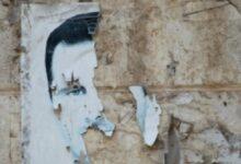 Photo of أمريكا تعلن حزمة جديدة من قيصر بحق مسؤولي نظام الأسد