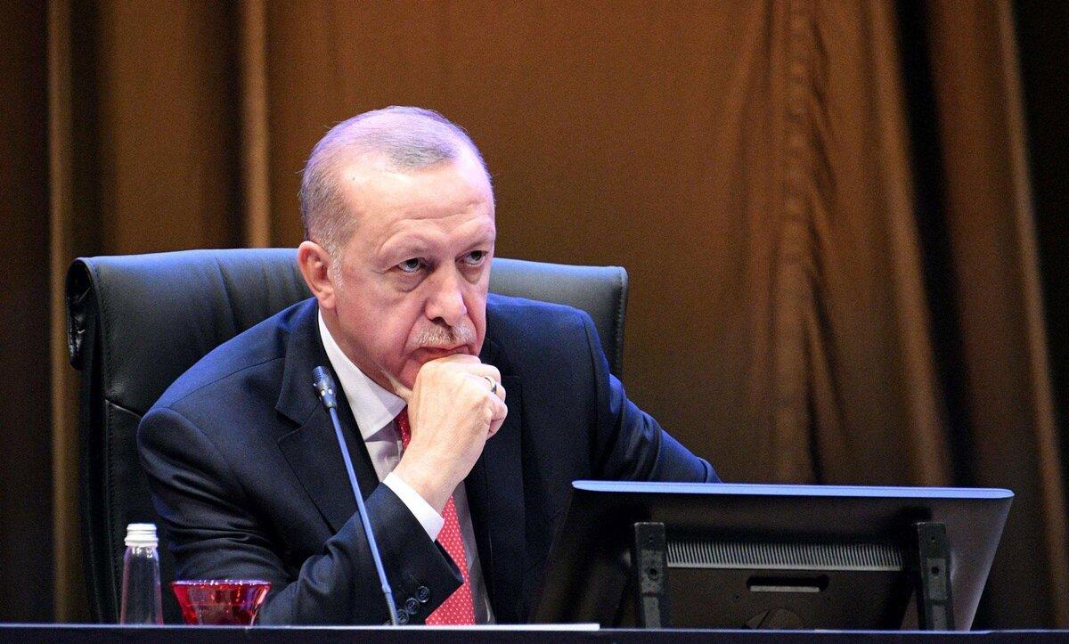 أردوغان - وكالات
