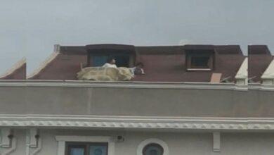 Photo of طفلان يمرحان على سطح منزل مرتفع في إسطنبول (فيديو)