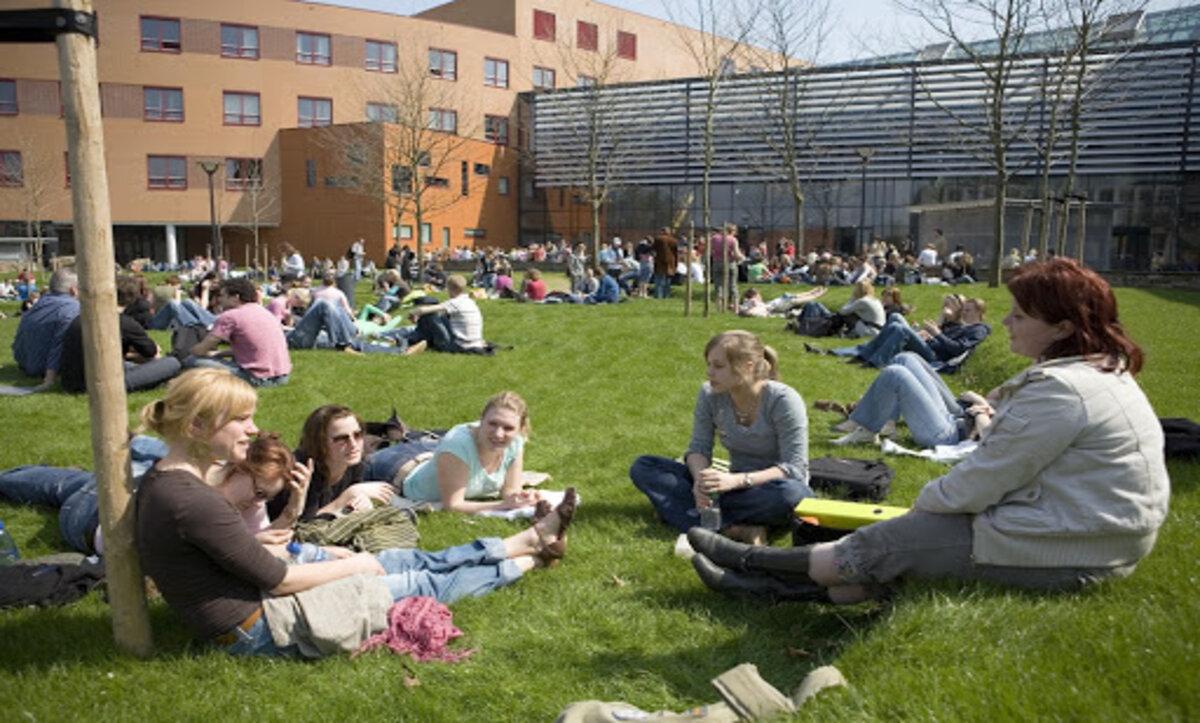 الدراسة في هولندا - مواقع التواصل