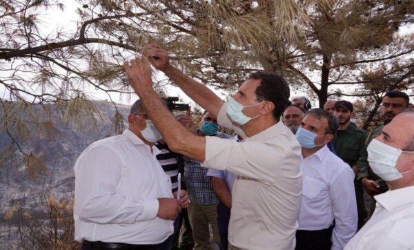 بشار الأسد - الساحل