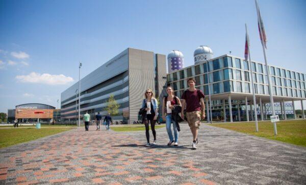 جامعات هولندية - مواقع التواصل