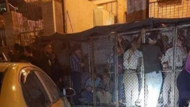 Photo of بعد أقفاص تنظيم دور الخبز .. الأسد يرفع سعره ويضيف ثمناً إضافياً للكيس