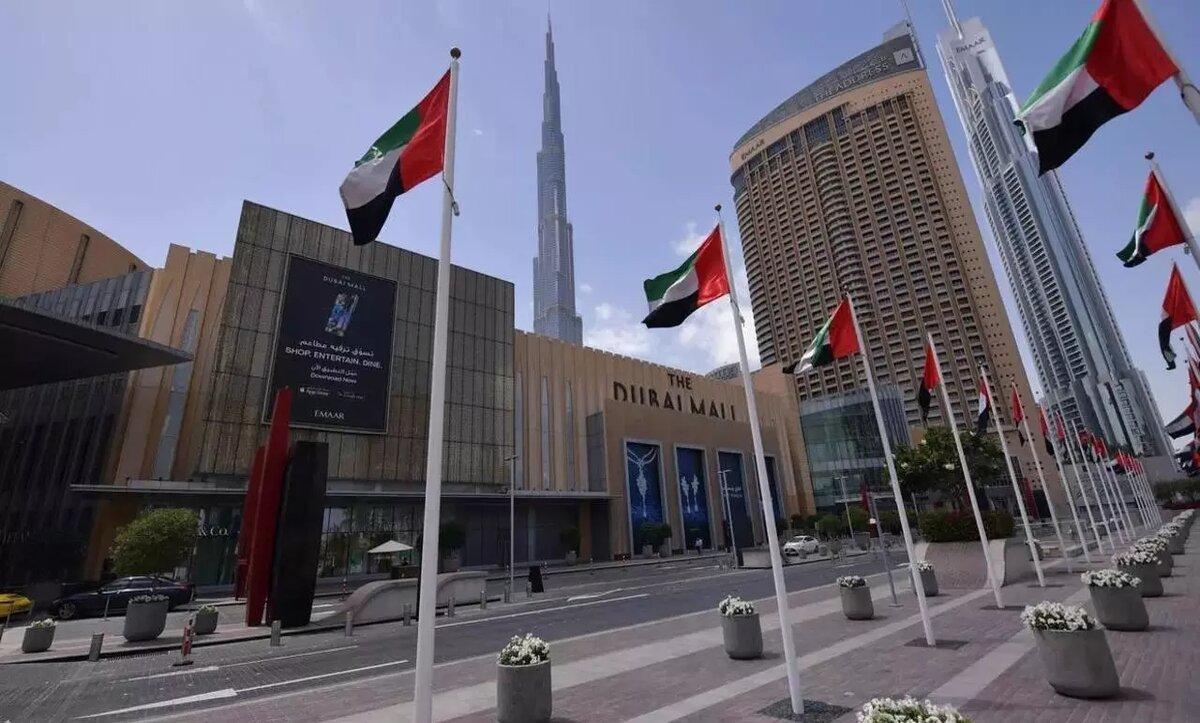 الإمارات العربية المتحدة - مواقع التواصل