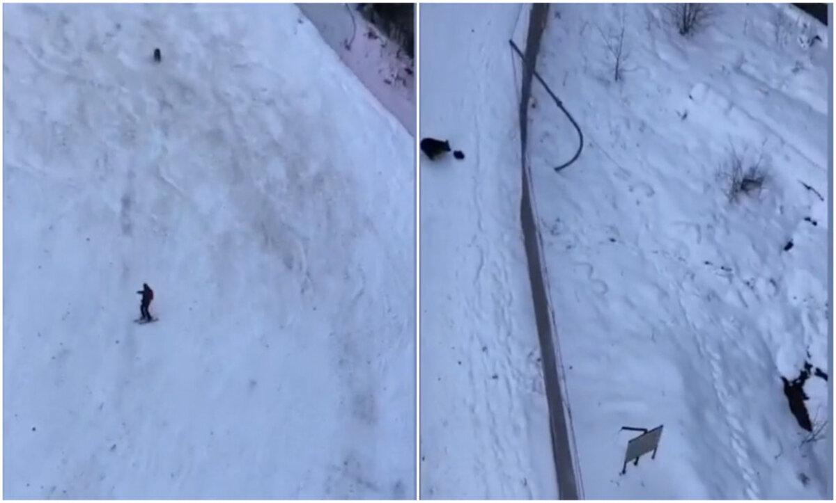 دب يلاحق متزلجاً وسط الثلوج أعلى جبل في رومانيا (فيديو)