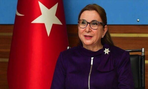 مسؤول تركي: المصالحة الخليجية ستنعكس إيجاباً على تعاون المنطقة مع تركيا