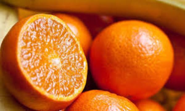 """حارب """"كورونا"""" وقوي مناعتك.. فوائد مذهلة للبرتقال ستدفعك لتناوله باستمرار"""