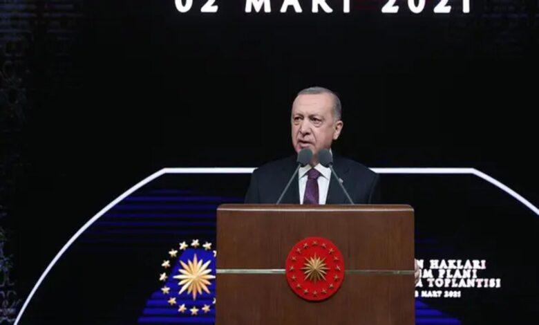 Photo of أردوغان: خطة من 11 مبدأ لرفع معايير حقوق الإنسان في تركيا