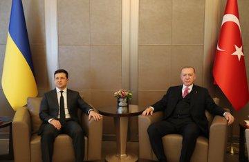 الرئيس أردوغان رفقة رئيس أوكرانيا في إسطنبول (الأناضول)