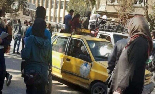 بدائل المواصلات في سوريا.. استخدام الشاحنات والأحصنة والسوزوكي كوسائل للنقل العام (فيديو)
