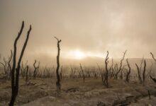 Photo of صنداي تايمز: إيران مفلسة من المياه بسبب إدارة النظام الحالي